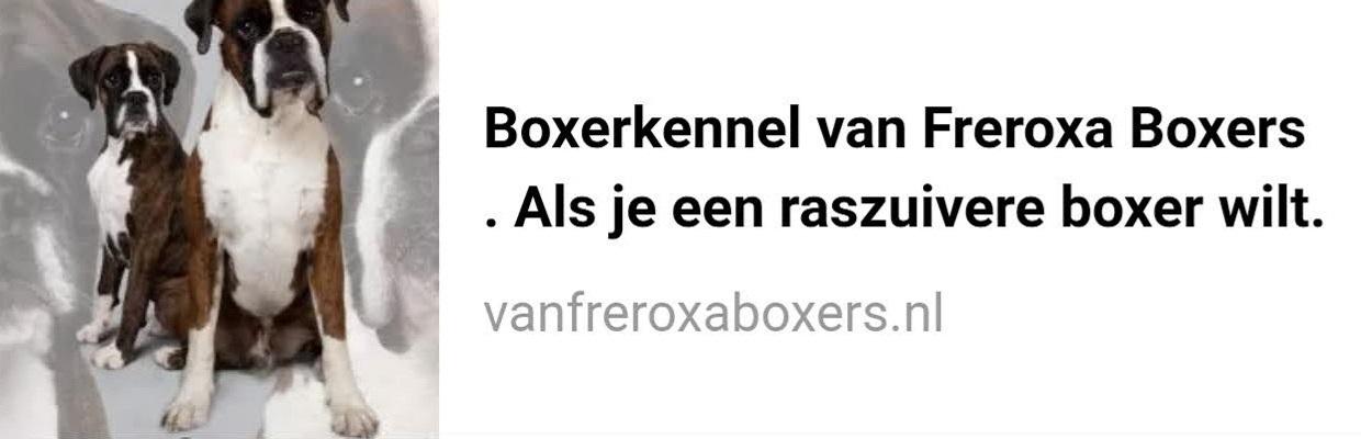 vanfreroxaboxers.nl